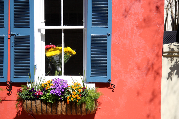 Flowers in a Window, Charleston, South Carolina (2011)